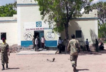 Militants have executed eight chieftains from Somalia's southwestern region of Bakool, local residents said.