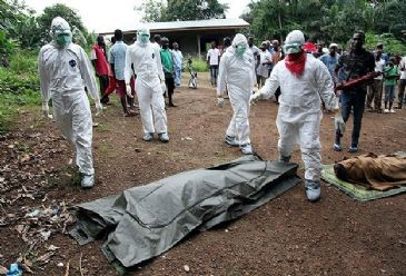 World Health Organization reported 128 new Ebola cases and 56 deaths in West Africa on August 10-11