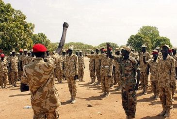 The Nigerian military has liberated several towns captured by Boko Haram militants in the restive northeastern region